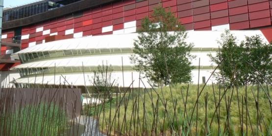 clement garden
