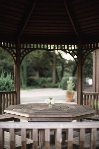 森林公園SINBI-010_s