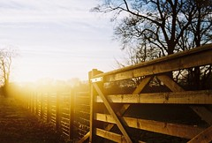 Sunny Gate - Kodak Retinette photo by Douglas Herbert