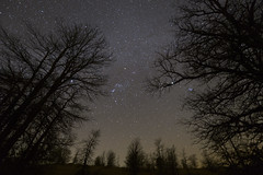 """""""Orion The Hunter"""" - 4K Time Lapse Still photo by Harles99"""