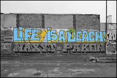 Life is a beach (Povre/Xtnd) photo by SÖKE