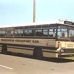 1984 Isuzu JCR500 bus