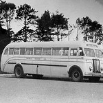 1949 Mack EH1S bus - photo Brian Schieb