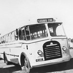 1955 Bedford SB bus