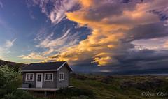 Paradise photo by Jonas Ottos
