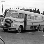 1952 Bedford SB bus - photo Brian Schieb