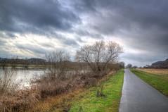 Weser Meadow in January 4 photo by blavandmaster