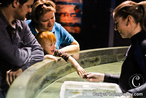 Cleveland Aquarium (27 of 28).jpg