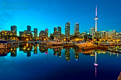 Toronto - Big City Lights photo by Pat Kavanagh