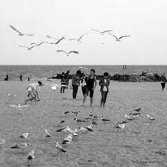Untitled photo by Rafakoy