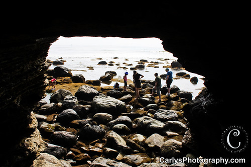san diego tide pools (12 of 34).jpg
