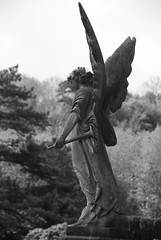 Winged grave angel, Arnos Vale Cemetery, Bristol, 13th May 2013 photo by joelmeadows1