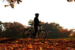 biker photo by artland