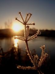 Winter View photo by Bryan Garnett Photography
