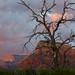 Sedona at Sunset 11