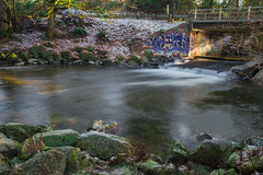 graffiti bridge photo by non stop creations- Sherry Landon