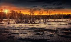 Marshland sunset photo by Chrisnaton