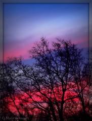 Aube aux deux couleurs photo by bleumarie