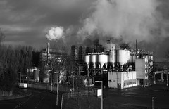 Industry photo by Harry -[ The Travel ]- Marmot
