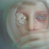 16325696847_fb94dddd56_t