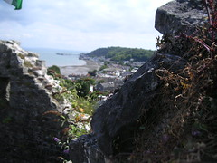 View of Mumbles from Oystermouth Castle