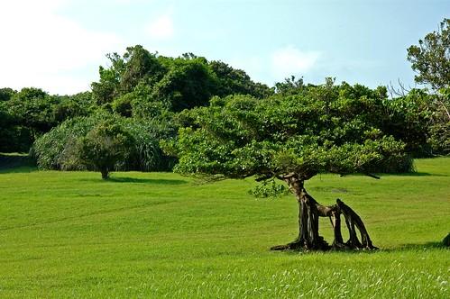 鵝鸞鼻公園