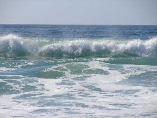 Wave Pacific Ocean