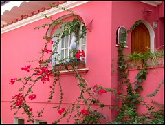 Pink House photo by David K. Edwards
