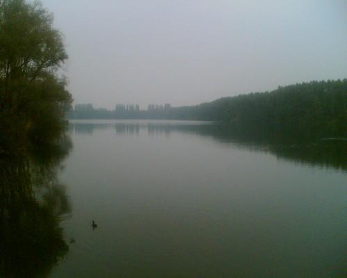 Elbsee im Nebel