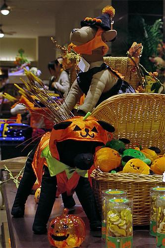 Ilio Halloween