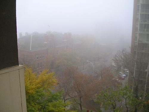 foggy 001