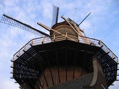Delft - Molen De Roos