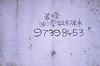 16479366051_521b1f6ca8_t
