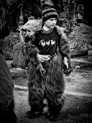 Boy in a bear costume photo by Constantin Florea
