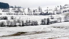 Winter landscape photo by radimersky
