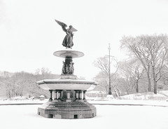 Central Park Snow - Angel of the Waters - New York City photo by Vivienne Gucwa