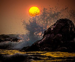Splash photo by www.chrisbirds.com