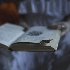 Bedtime Stories photo by StephaniePearl ☪