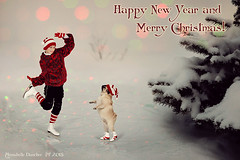 Happy New Year 2015 and Merry Christmas! photo by Annabelle Danchee