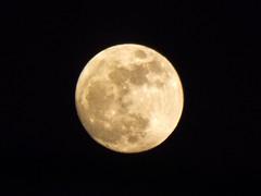 Tonight's Full Moon photo by karen.hawes789