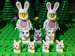 The Bunny Brigade! photo by woodrowvillage