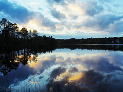 Lake view photo by Jens Haggren