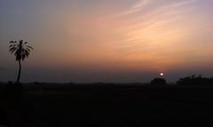 Beautiful Calm Sunset in Parshuram, Feni, Bangladesh photo by samim_hasan