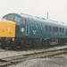 BR Blue Class 45/1, 45133
