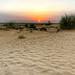 Desert silence!
