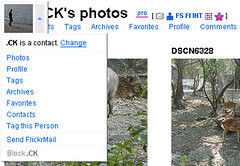 flickr multi group sender