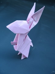 Rabbit 兔子 photo by egg.origami