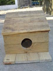 Ninho construido com material reutilizavel
