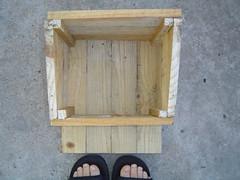 Ninho construido com material reutilizavel2