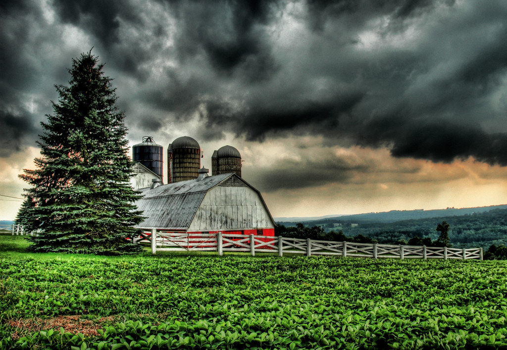 The Barn in the Storm